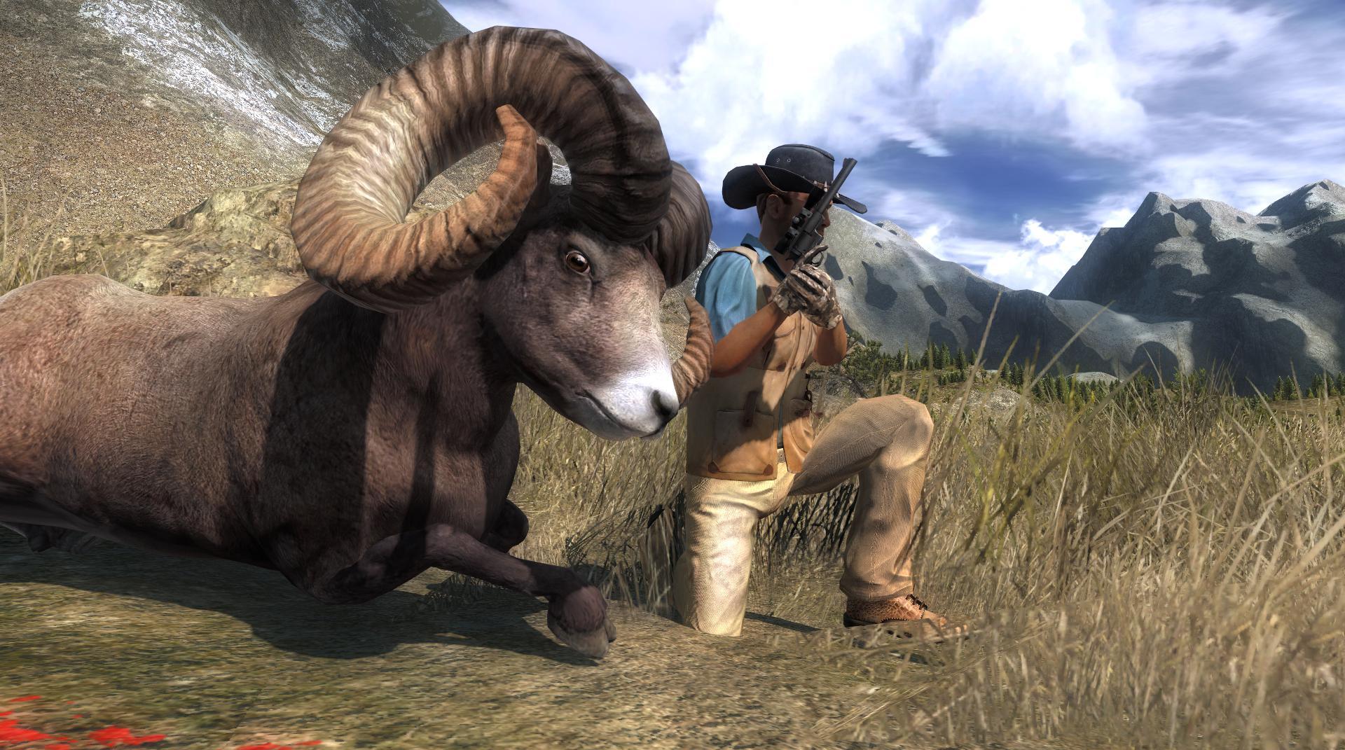 TOP 5 Bighorn Sheep // Muflón de las Rocosas 0876d22667c6fb2fd238eeac544c749b8e30b7fc