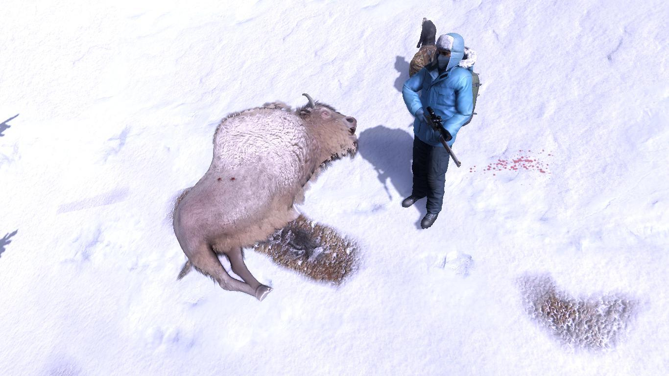 Animales RAROS ponedlos aqui :D! - Página 30 4467b327417bdd5d44c270056e96f0ffff3e44ab