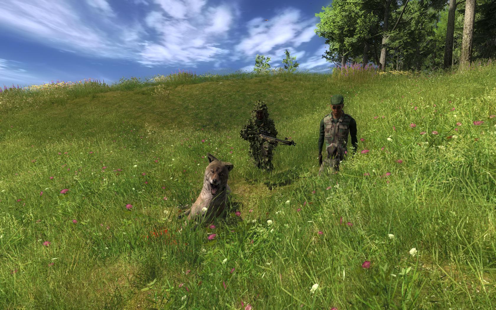 Fotografie in multiplayer con i Nostri AMICI - Pagina 5 46ae3fc1e4778d8b5400f376252ca4a1a629e64e