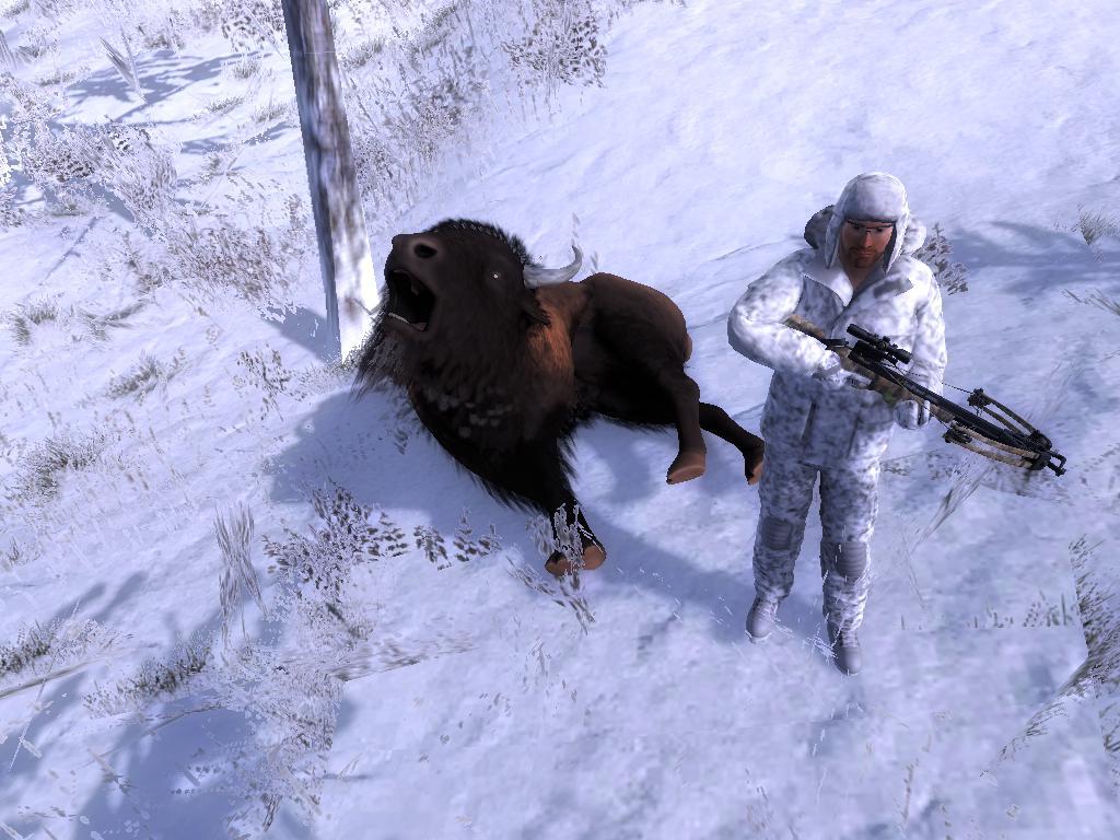 Bison Attack!! 5934a0eb3defbbf01726be1dd06786dca56a215e