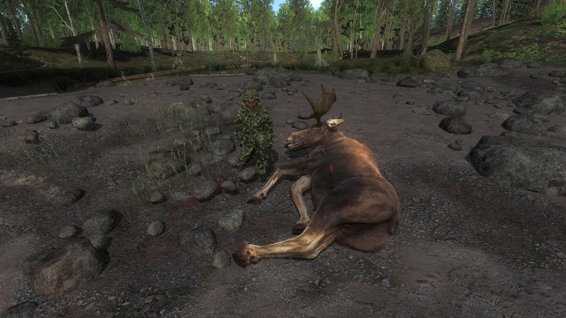 [CONCLUSA]Competizione theHunteritaly: Stalking Moose 61fd33925b2139fb5319c26191df6106c5f23a15