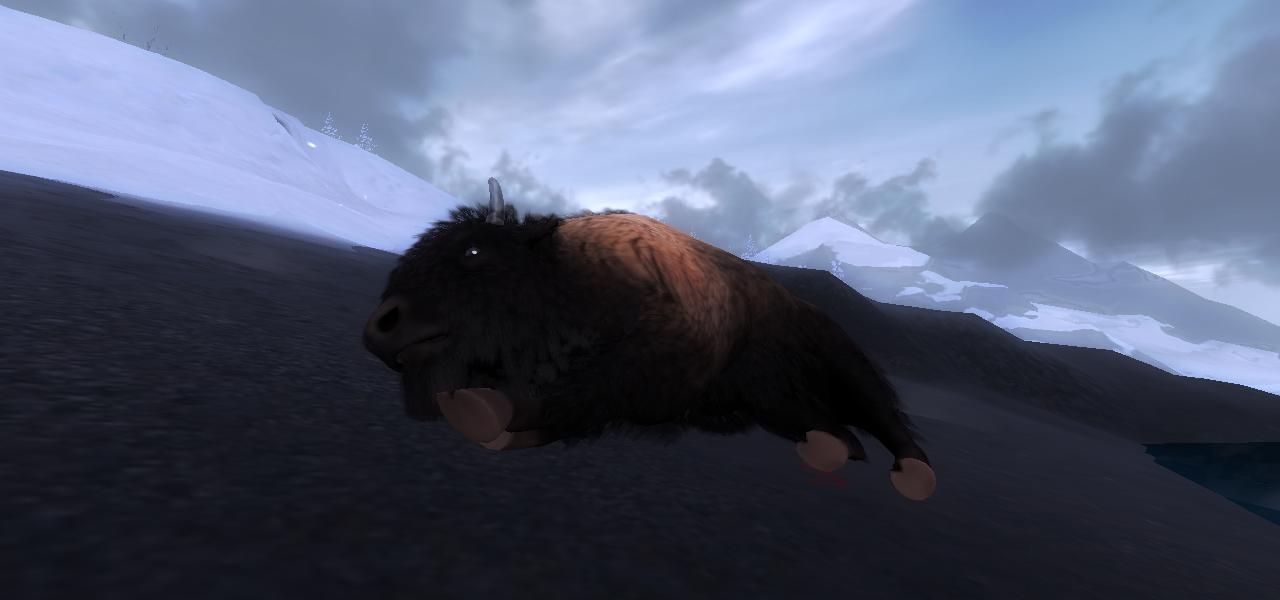 a caccia di bisonti 83b74d01e08641e5b094079f507baa24dae1147f