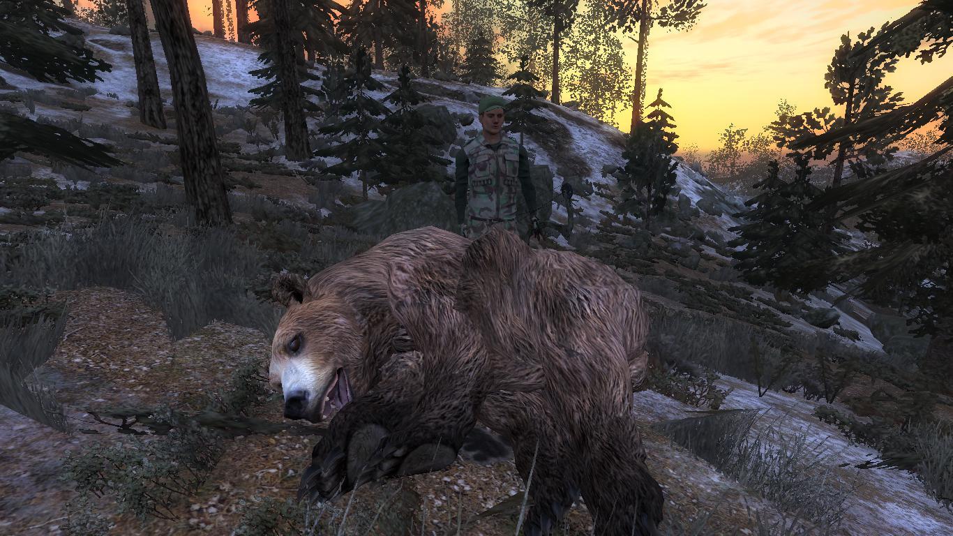 [CONCLUSA] Competizioni ufficiali TheHunteritaly - Orso Bruno King of Bears 8caf6f369c275ba66a5bf96f724b62d49f91943b