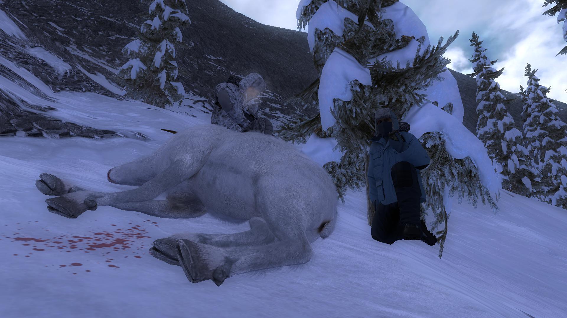 "Immagini dei vostri ""Bighorn bianco"" 90bb69deee34d037eb8ff6647eecd9879c086722"