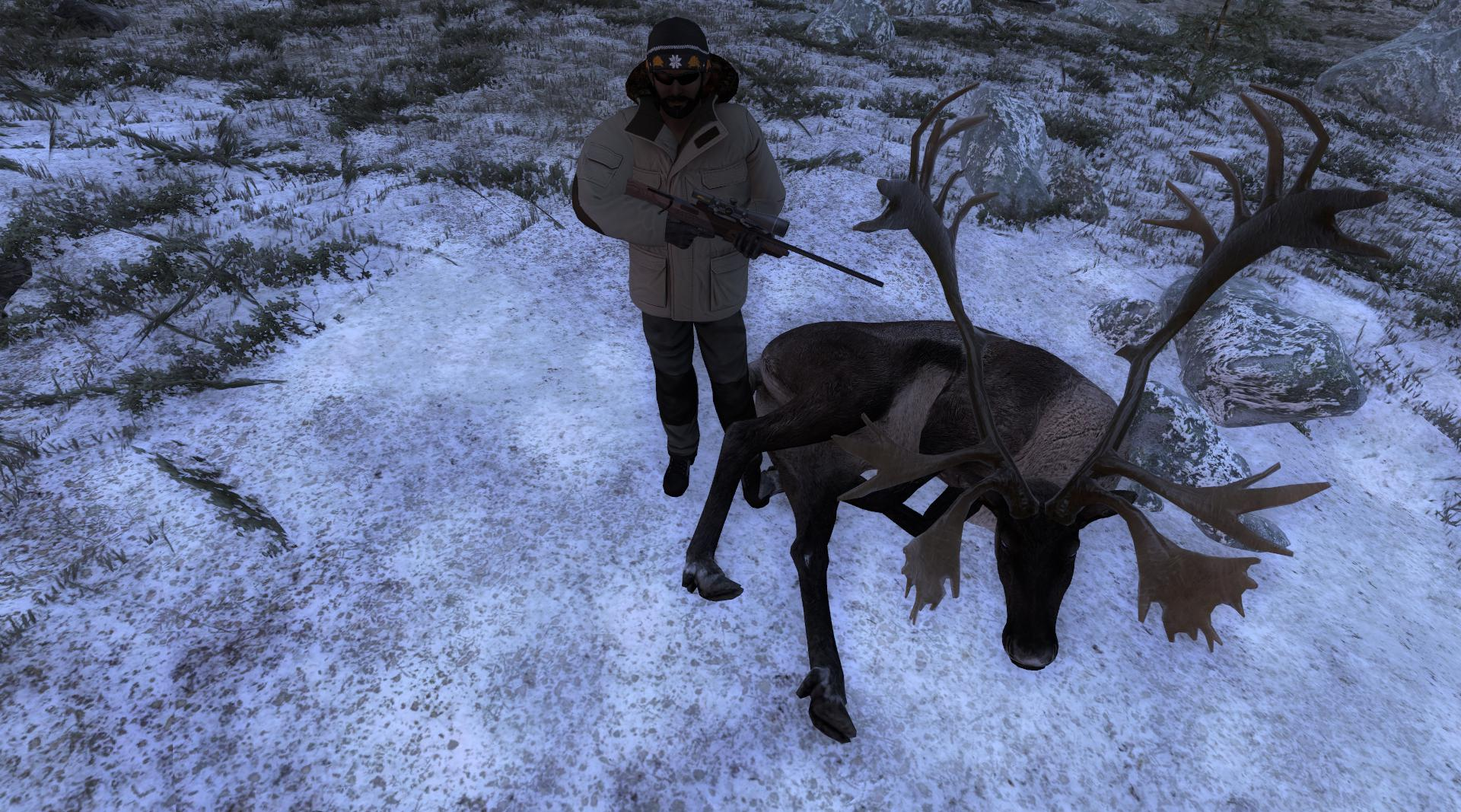 TOP 5 Reindeer // Reno Db4a4ff15ebac4e5cb17cdf30d14d70f1cde224f
