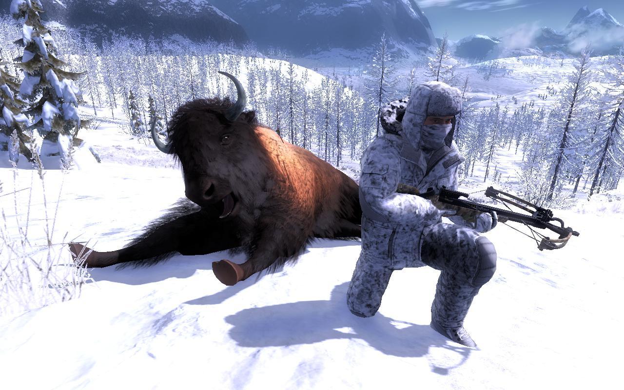 Bison Attack!! Ea40bb191eef89bdfa5ec0c00a5a155d0f30e4c6