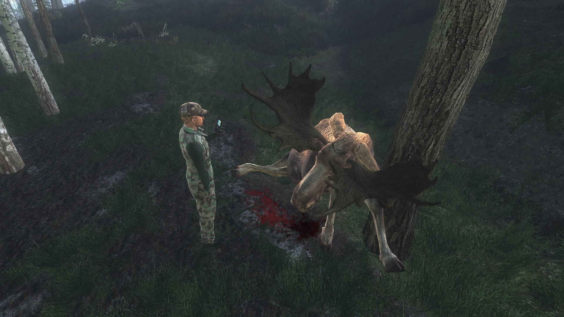 [CONCLUSA]Competizione theHunteritaly: Stalking Moose F2ab75651f2014e66f22d6ff4b3ab43eb3f6562e